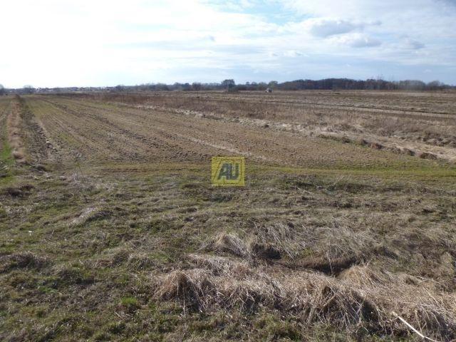 Działka rolna na sprzedaż Konstancin Jeziorna, Bielawa  3900m2 Foto 1