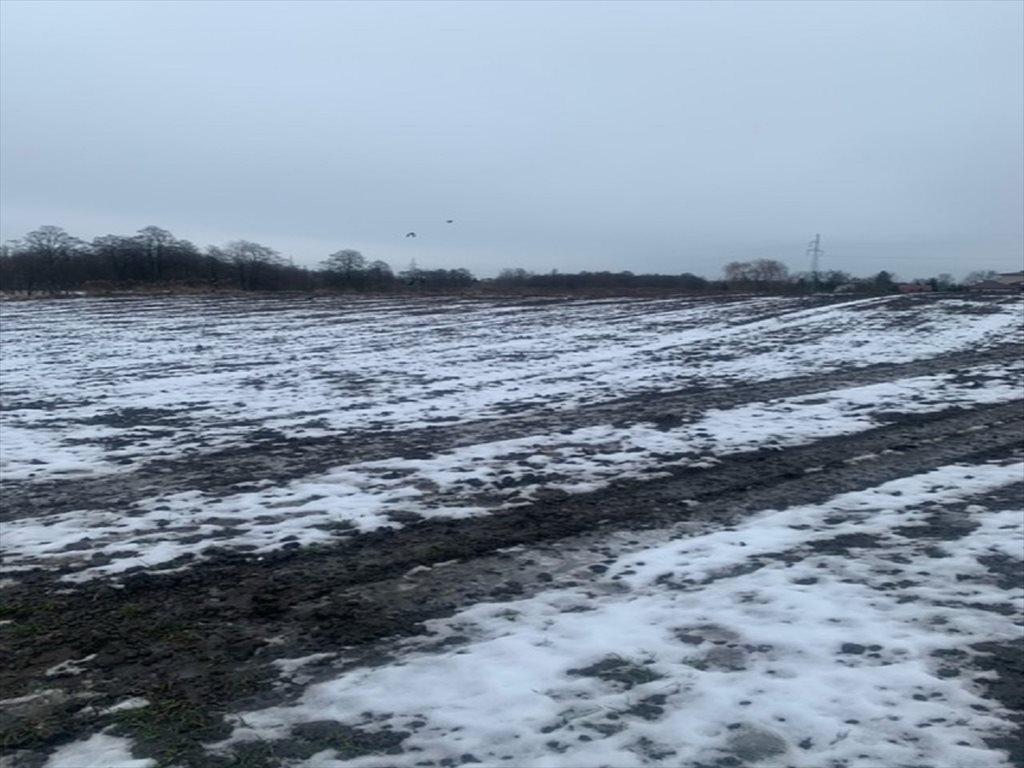 Działka rolna na sprzedaż Lublin, Zemborzyce  2400m2 Foto 2