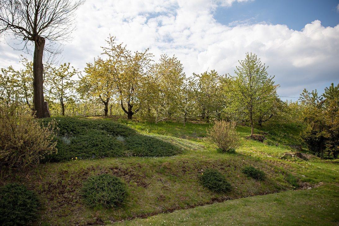 Działka gospodarstwo rolne na sprzedaż Korzenna  114m2 Foto 9