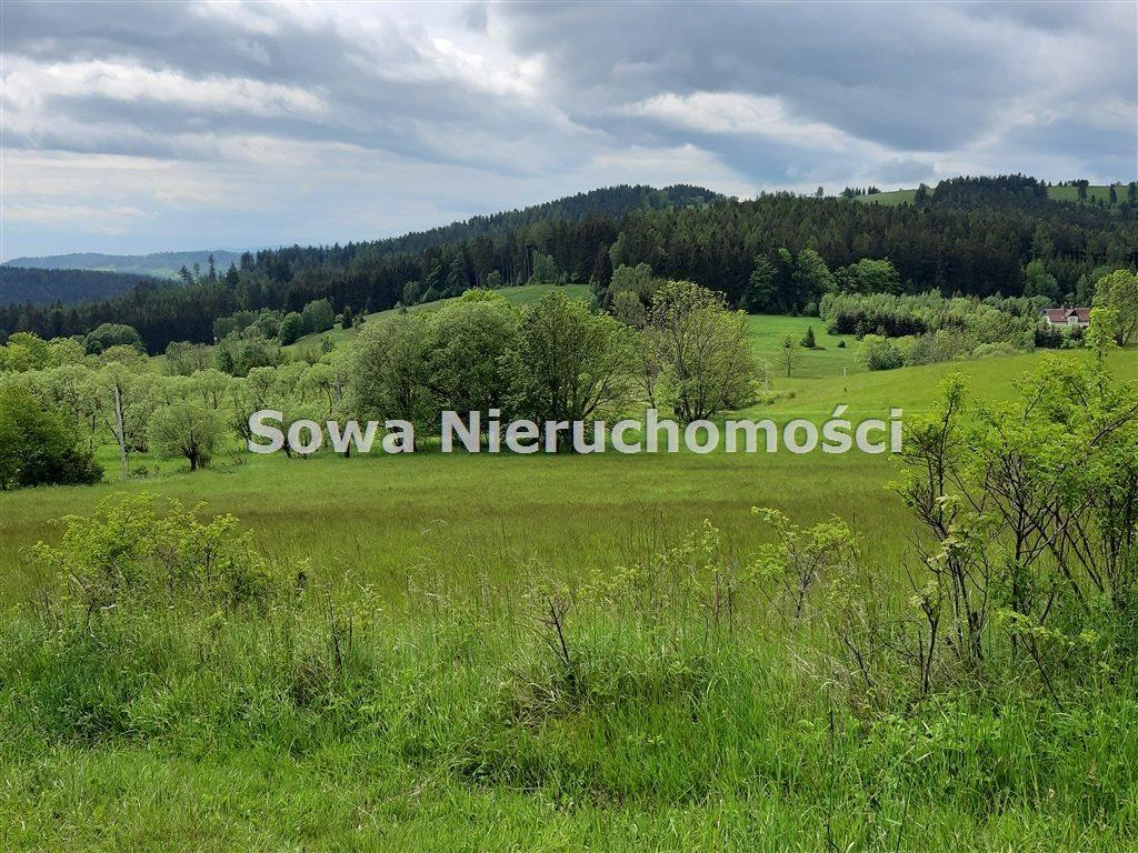 Działka inna na sprzedaż Ludwikowice Kłodzkie  1369m2 Foto 1