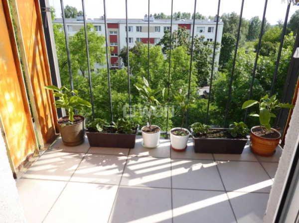 Mieszkanie trzypokojowe na sprzedaż Częstochowa, Trzech Wieszczów, Zana  50m2 Foto 4