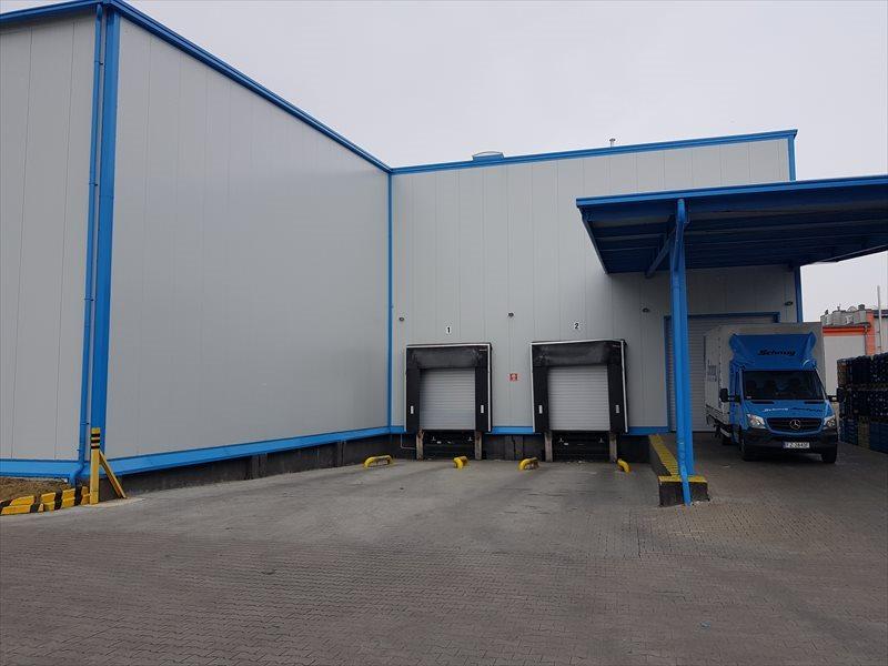 Lokal użytkowy na wynajem SWARZEDZ - Magazyn, Hala - 1000 m2 lub 1600 m2  2400m2 Foto 1