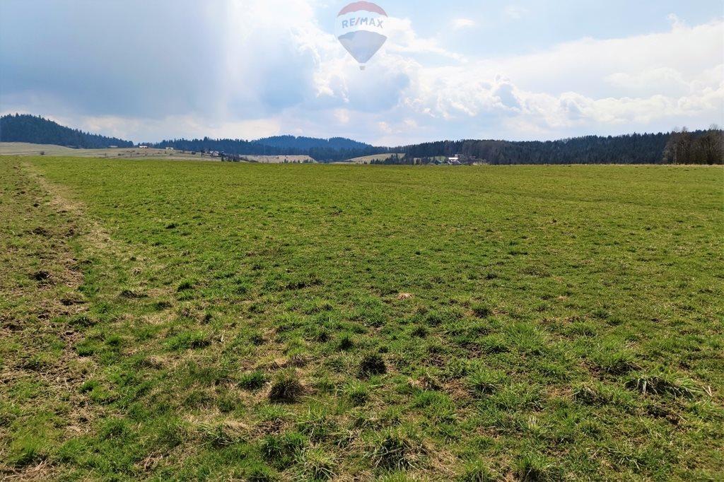 Działka rolna na sprzedaż Grywałd  8096m2 Foto 7
