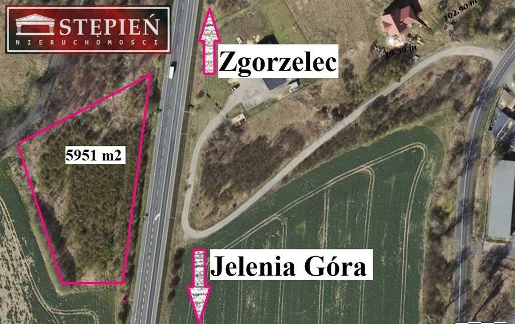 Działka przemysłowo-handlowa na sprzedaż Olszyna Lubańska  5950m2 Foto 2