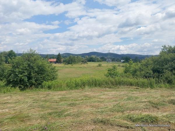 Działka budowlana na sprzedaż Krosno, Turaszówka  4200m2 Foto 1