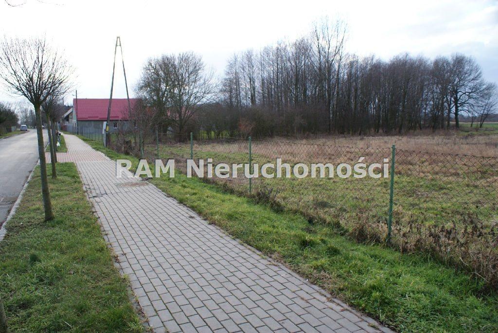 Działka budowlana na sprzedaż Bucze  5200m2 Foto 10