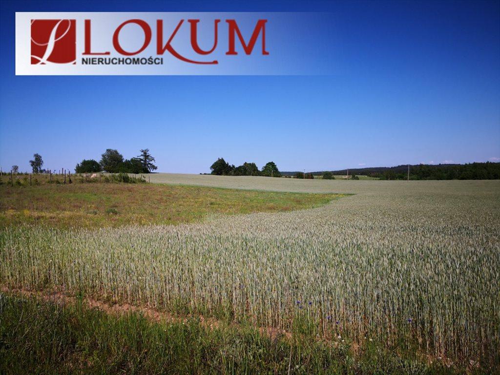 Działka rolna na sprzedaż Nowy Wiec  72525m2 Foto 5