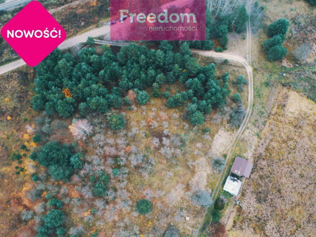 Działka siedliskowa na sprzedaż Strabla  3600m2 Foto 2