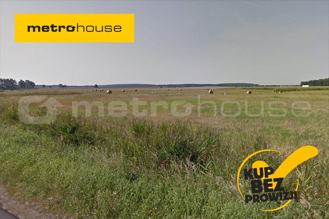 Działka rolna na sprzedaż Trzcielin, Dopiewo  44400m2 Foto 1