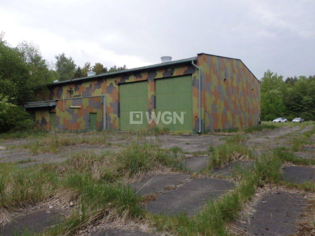 Działka budowlana na sprzedaż Oświęcim, polana w lesie  727m2 Foto 10