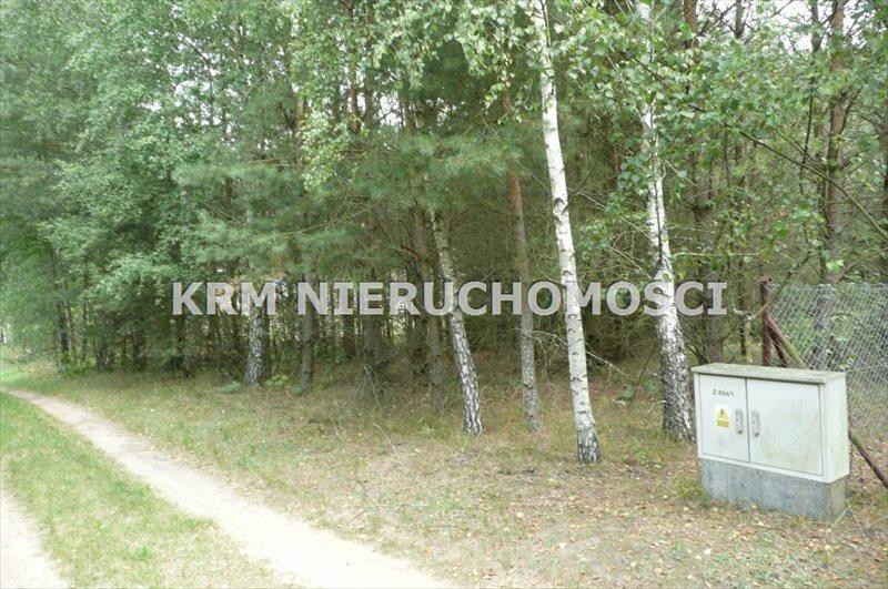 Działka rekreacyjna na sprzedaż BORY TUCHOLSKIE, LIPY, gm. STARA KISZEWA  1012m2 Foto 1