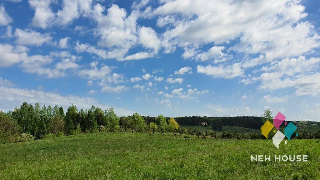 Działka rolna na sprzedaż Brąswałd  3540m2 Foto 6