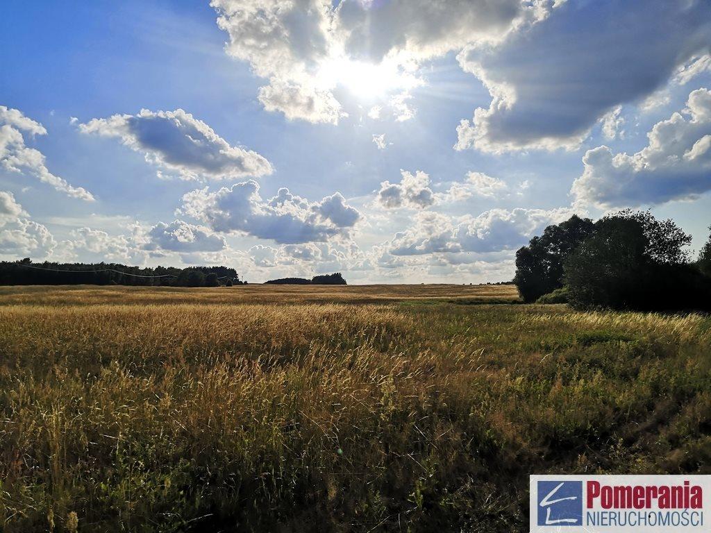 Działka rolna na sprzedaż Wąwelnica  37300m2 Foto 1