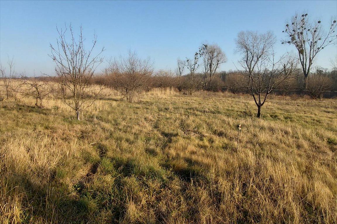 Działka rolna na sprzedaż Gałów, Miękinia  276m2 Foto 9