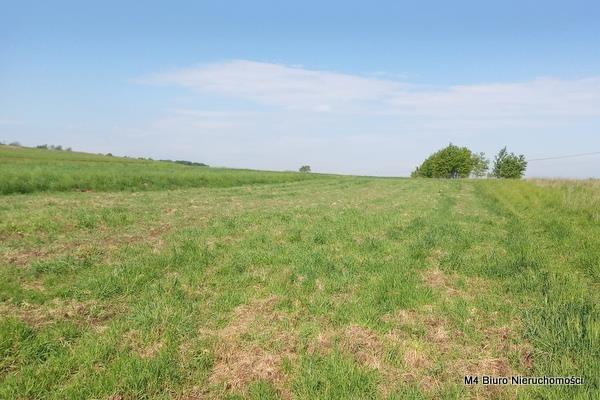 Działka rolna na sprzedaż Żeglce  15500m2 Foto 4