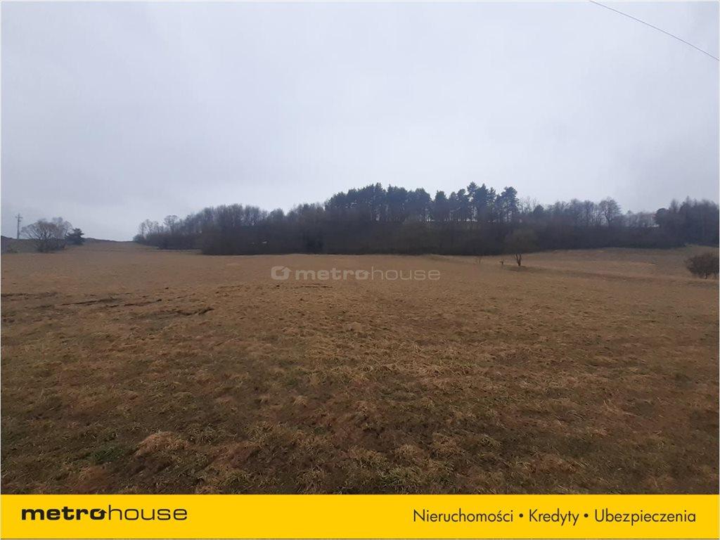 Działka rolna na sprzedaż Rzepedź, Komańcza  9300m2 Foto 5