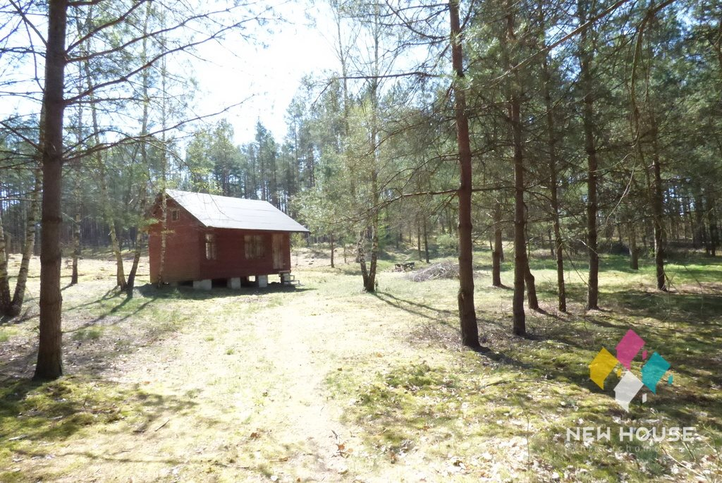 Działka rekreacyjna na sprzedaż Pluski  2339m2 Foto 2