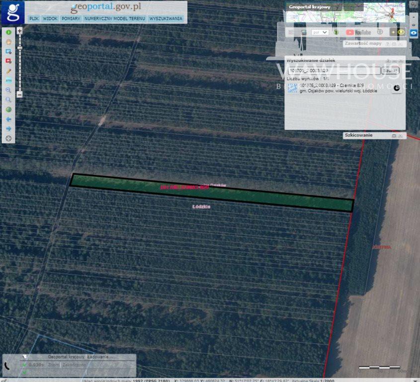 Działka leśna na sprzedaż Czernice  34700m2 Foto 10