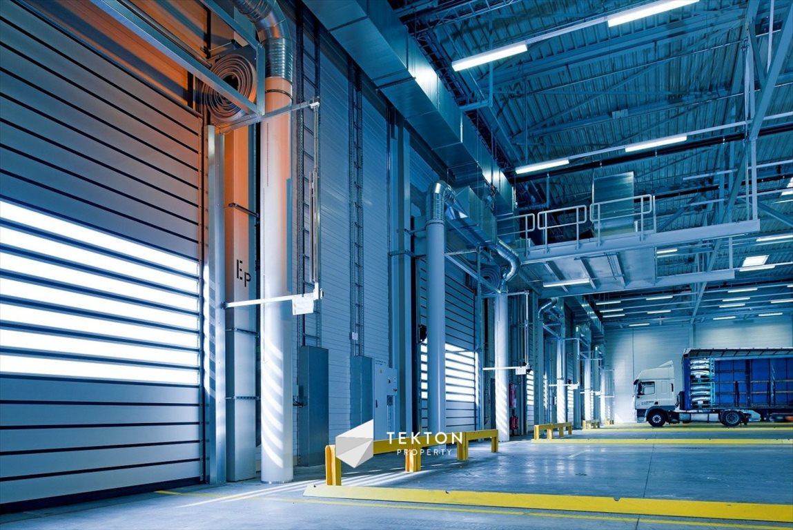 Działka przemysłowo-handlowa na sprzedaż Suchy Dwór, Lisia  5200m2 Foto 1