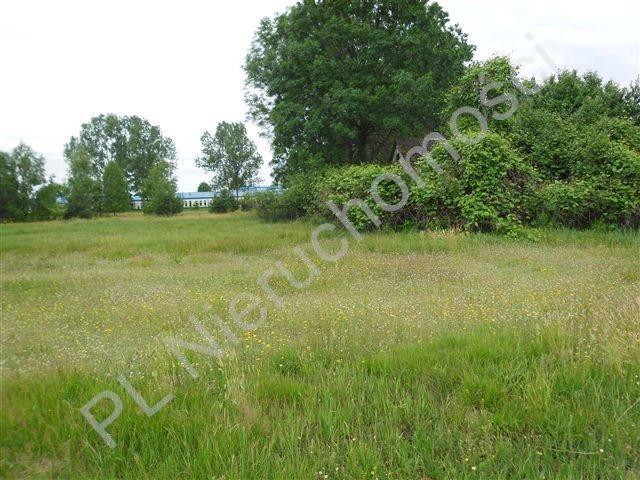 Działka rolna na sprzedaż Stanisławów  26000m2 Foto 1