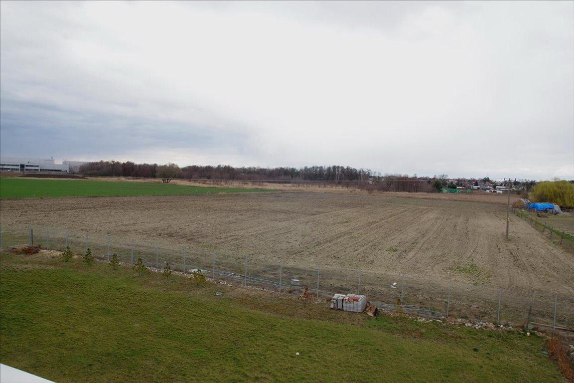 Działka rolna na sprzedaż Stary Mirków, Długołęka  4000m2 Foto 2