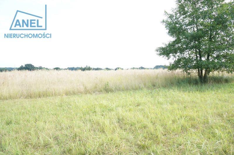 Działka rolna na sprzedaż Mikołów, Paniowy  1086m2 Foto 3