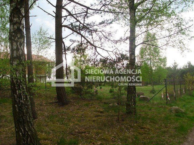Działka siedliskowa na sprzedaż Miedzno  4564m2 Foto 5