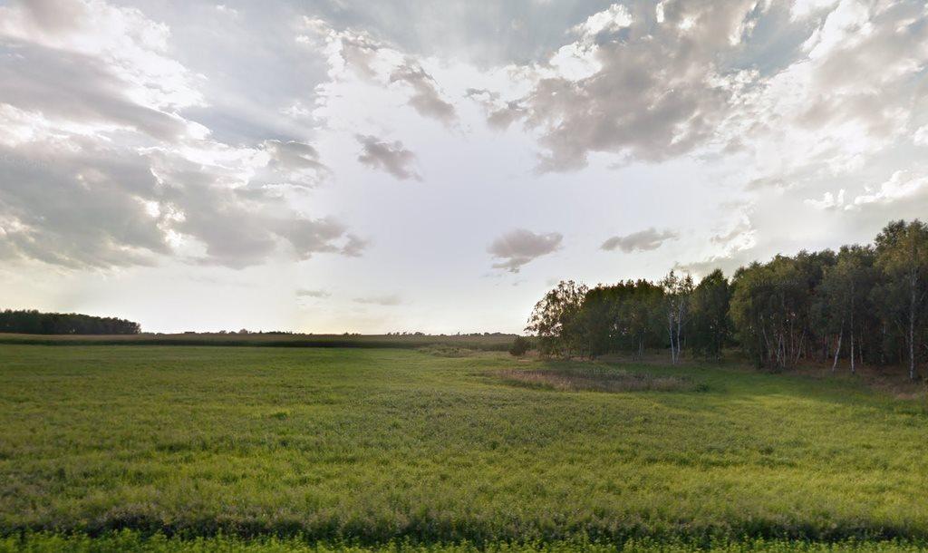 Działka przemysłowo-handlowa na sprzedaż Golęczewo  10000m2 Foto 4