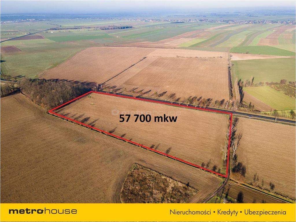 Działka rolna na sprzedaż Bogdańczowice, Kluczbork  57700m2 Foto 2
