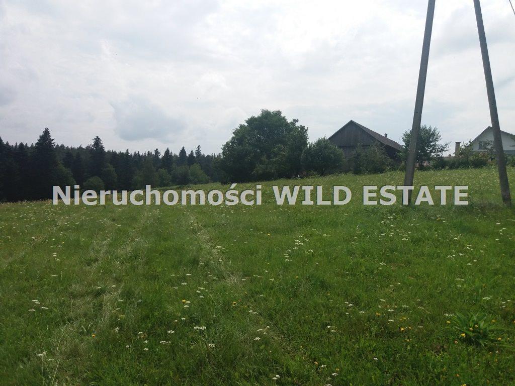 Działka rolna na sprzedaż Solina, Werlas  5011m2 Foto 6