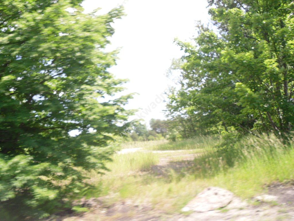 Działka siedliskowa na sprzedaż Sowia Wola  75115m2 Foto 3