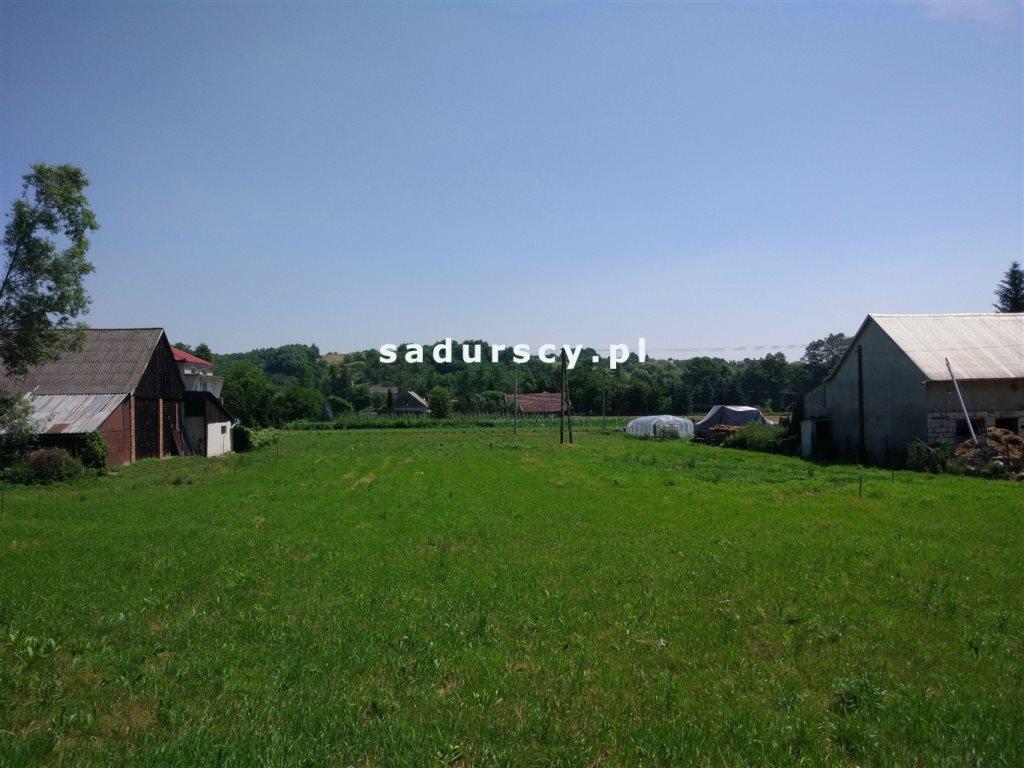 Działka budowlana na sprzedaż Giebułtów, Zarzecze  3761m2 Foto 11