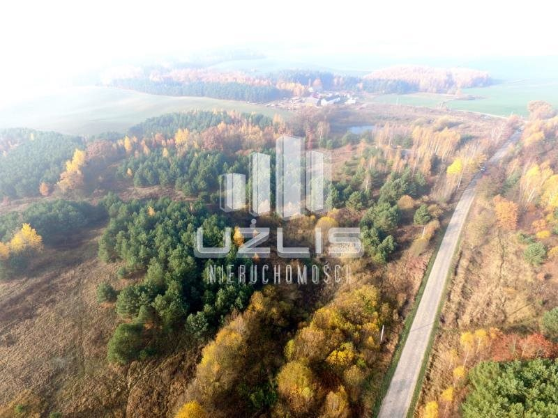 Działka rolna na sprzedaż Tczew  40600m2 Foto 6
