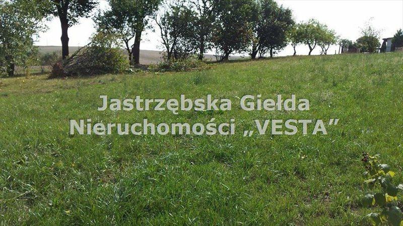 Działka inna na sprzedaż Jastrzębie-Zdrój, Szeroka  1030m2 Foto 1
