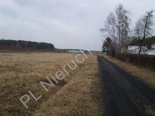 Działka budowlana na sprzedaż Nadarzyn  1000m2 Foto 7