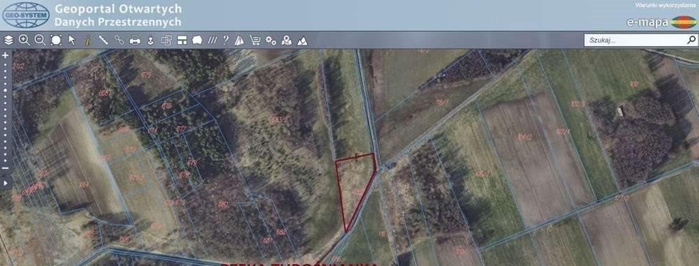 Działka rolna na sprzedaż Janowicze  4300m2 Foto 2