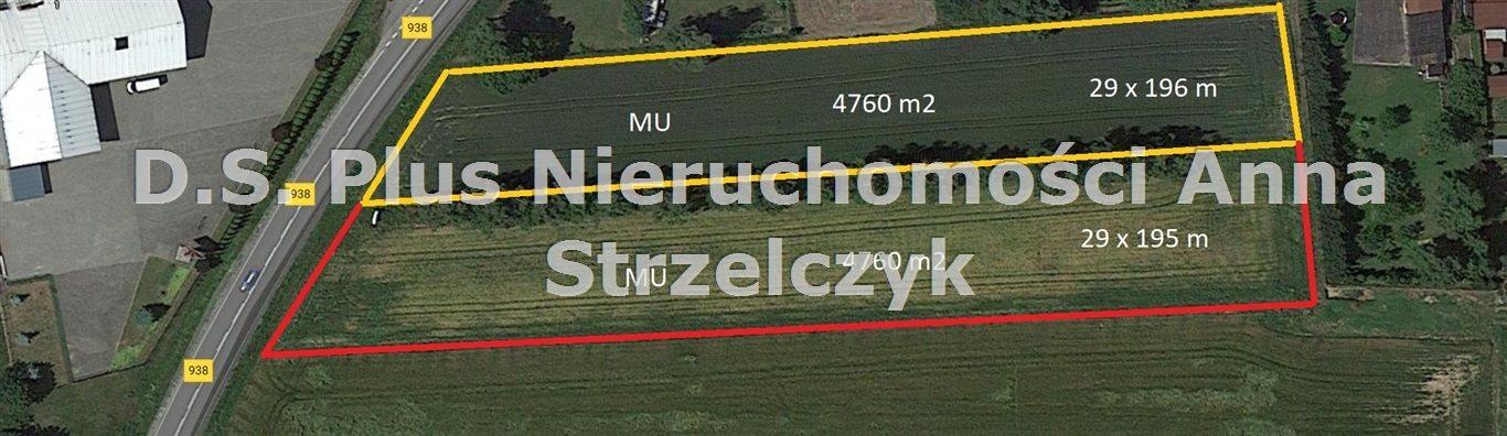 Działka budowlana na sprzedaż Golasowice  4760m2 Foto 1