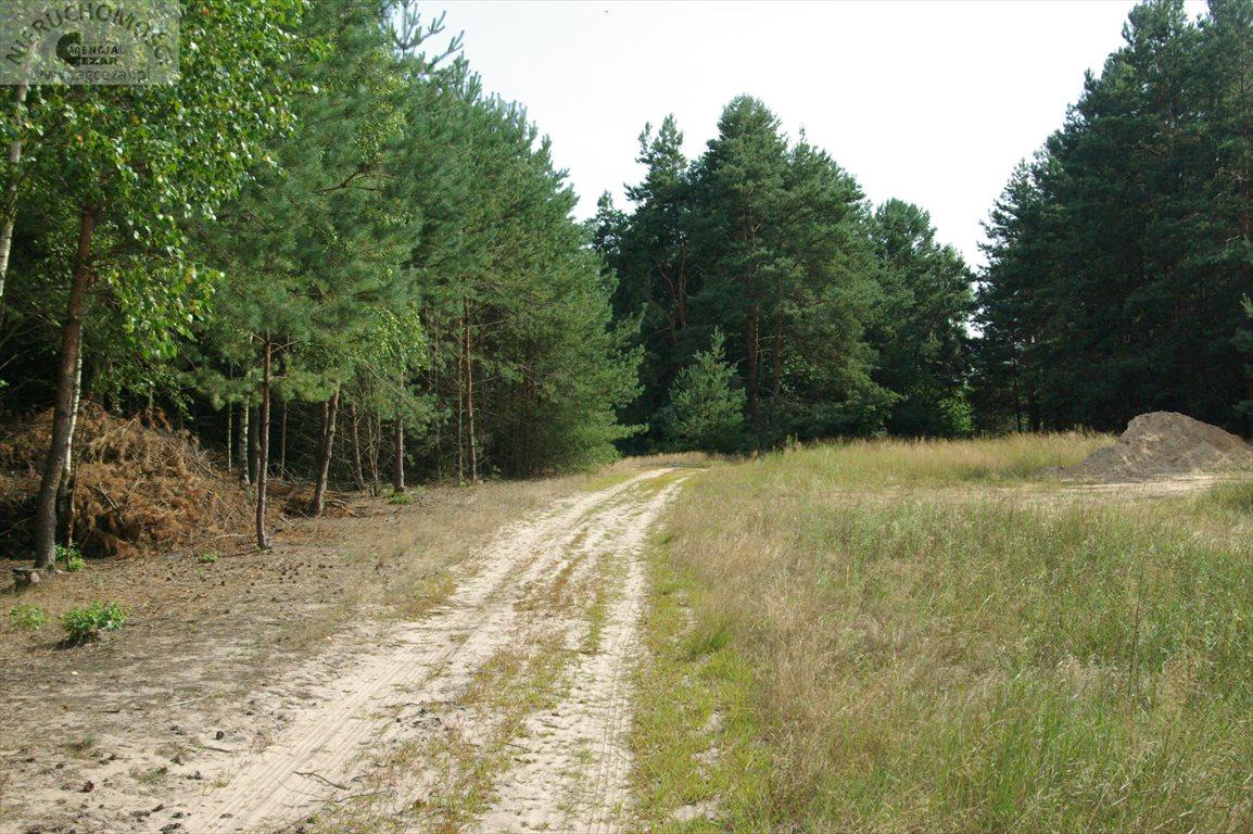 Działka budowlana na sprzedaż Łaziska  1060m2 Foto 12