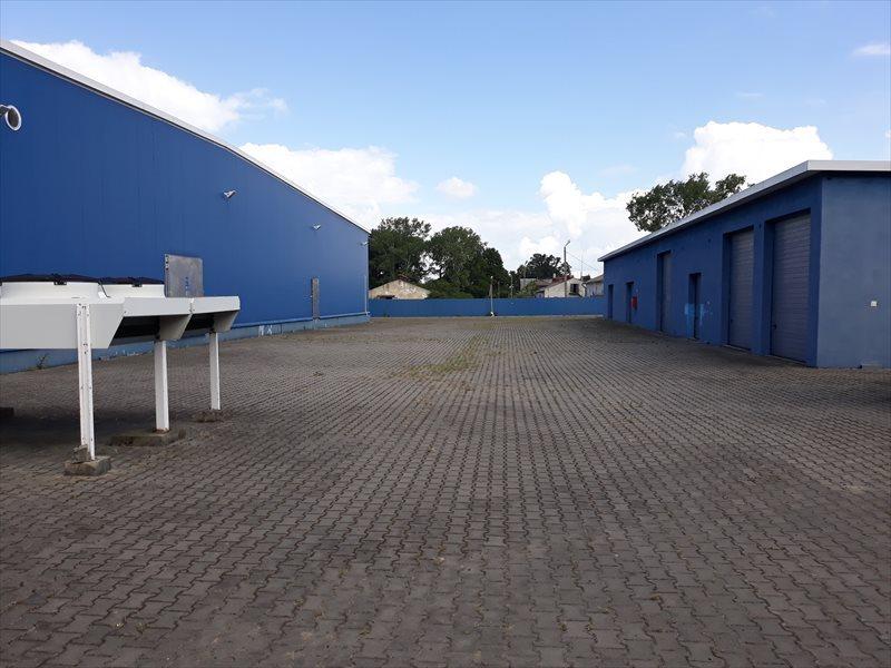 Lokal użytkowy na wynajem Hala - MAGAZYN - produkcja. 3648 m2 - WROCLAW  3648m2 Foto 5