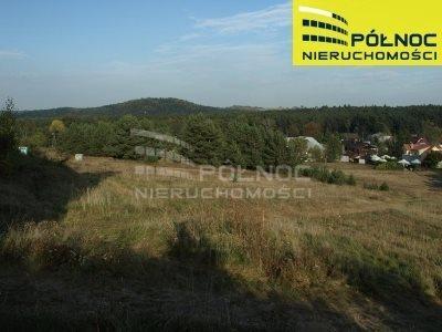 Lokal użytkowy na sprzedaż Rabsztyn  2000m2 Foto 3