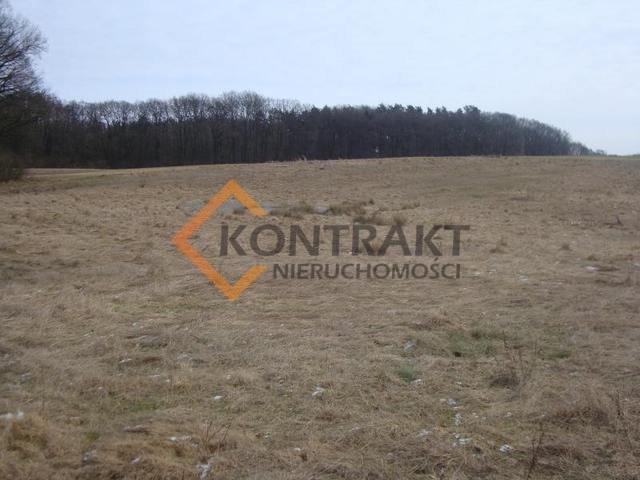 Działka rolna na sprzedaż Przęsocin  3005m2 Foto 4