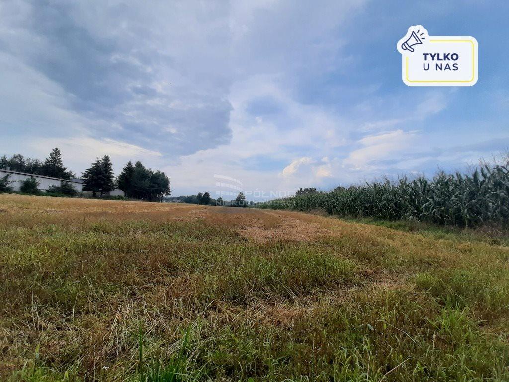 Działka rolna na sprzedaż Żurawieniec  22500m2 Foto 1