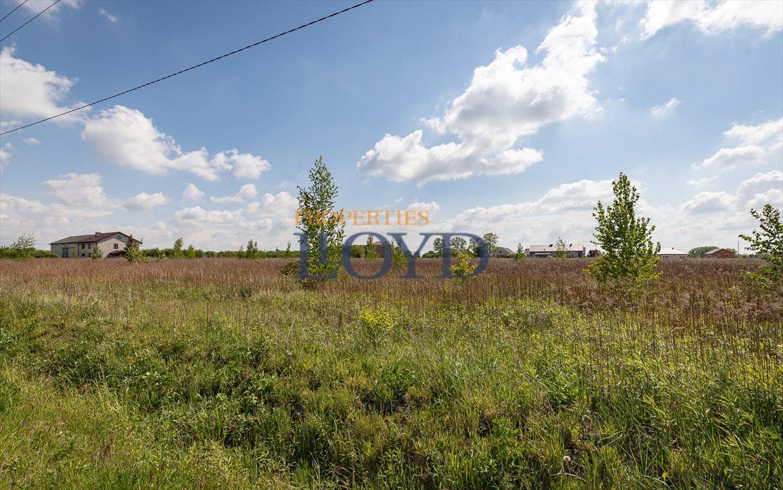 Działka rolna na sprzedaż Wola Wągrodzka, Ogrodowa  1000m2 Foto 6
