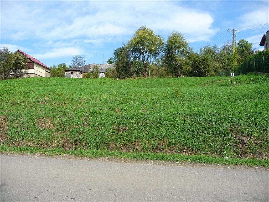 Działka budowlana na sprzedaż Golkowice  2000m2 Foto 3