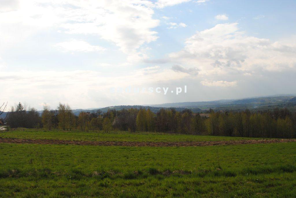 Działka rolna na sprzedaż Gruszowiec  5500m2 Foto 4