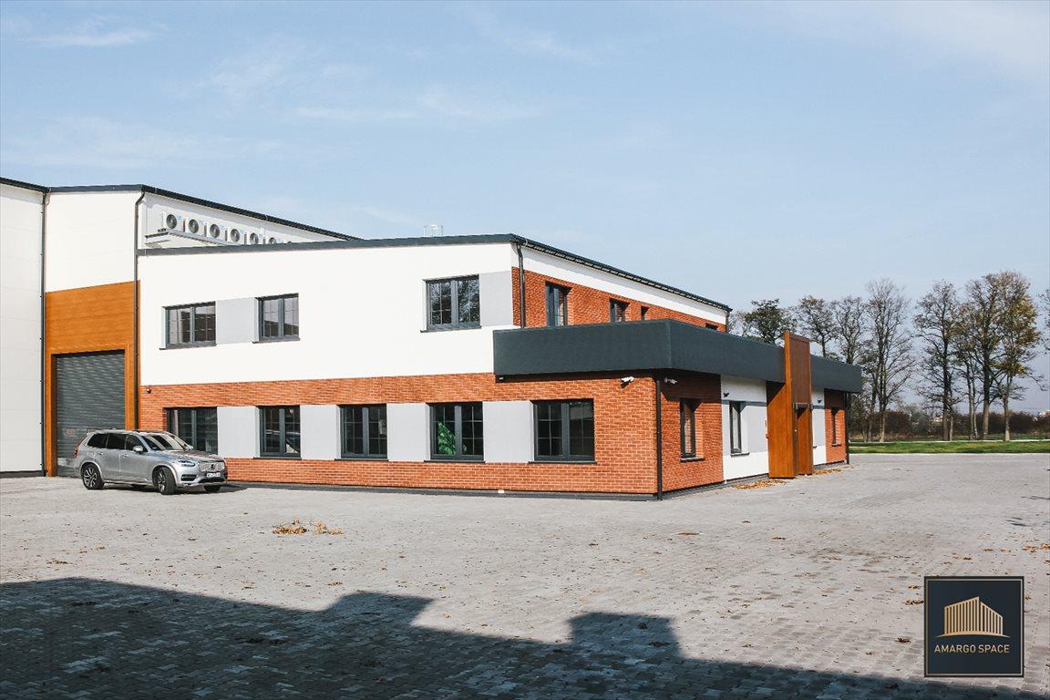 Lokal użytkowy na wynajem Ożarów Mazowiecki, Hallera 9  2000m2 Foto 2