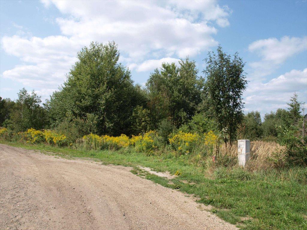 Działka budowlana na sprzedaż Wierzchowisko  1054m2 Foto 1