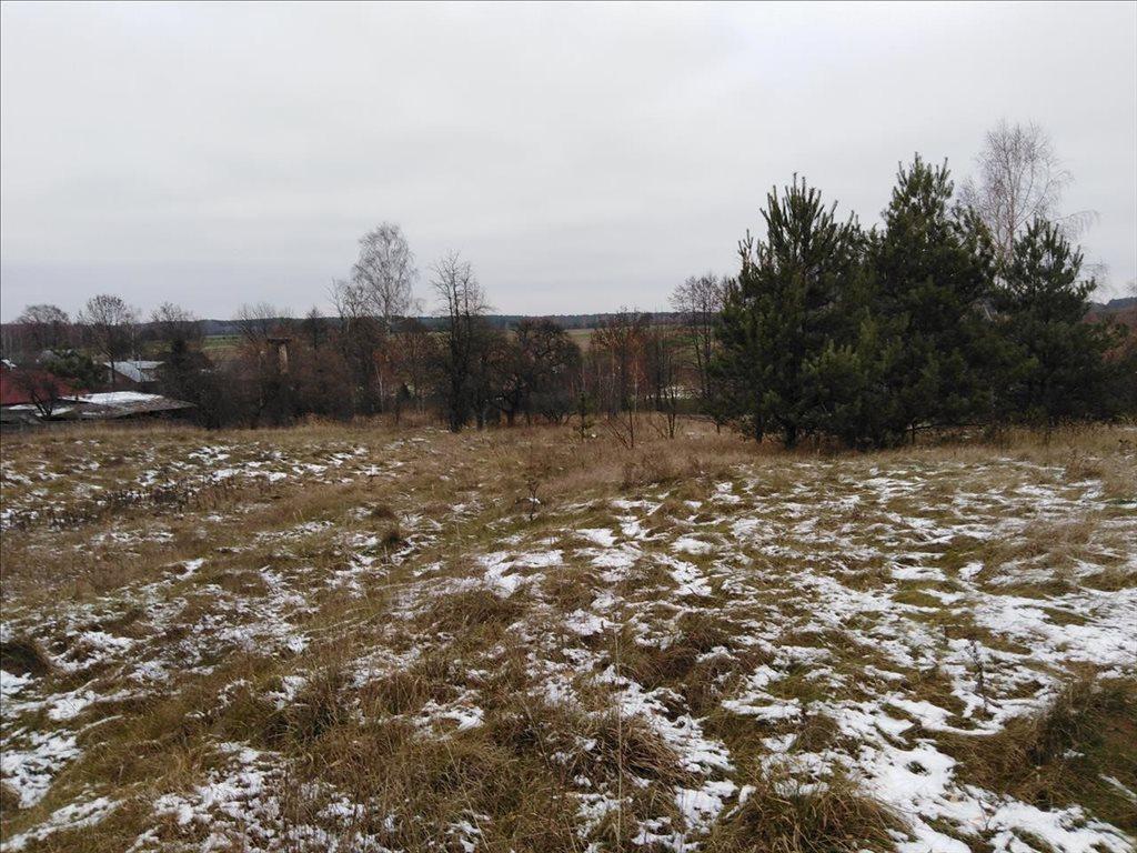Działka siedliskowa na sprzedaż Stare Gałkowice, Kamieńsk  34200m2 Foto 1