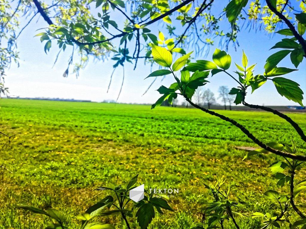 Działka przemysłowo-handlowa na sprzedaż Domasław, Południowa  61165m2 Foto 2