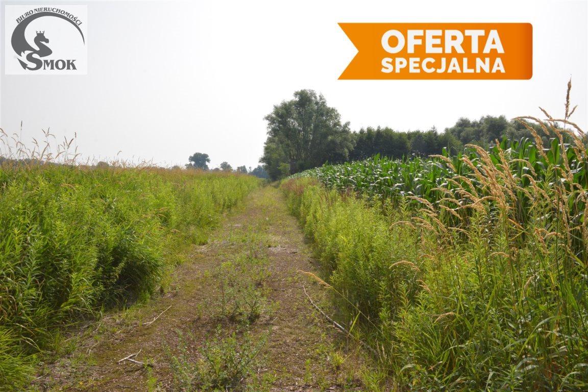 Działka rolna na sprzedaż Zakrzowiec  9715m2 Foto 3
